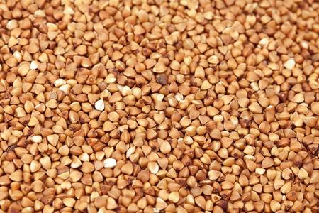 Buckwheat background photo