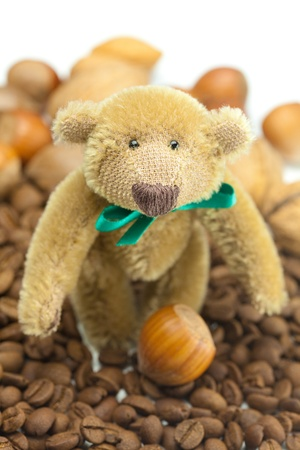 teddy bear with a bow, coffee beans and nuts Stock Photo - 9227420