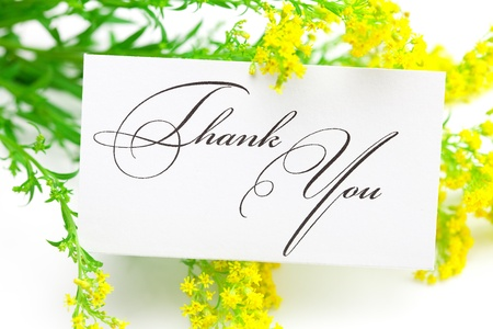 yellow field  flower and a card signed thank you isolated on white