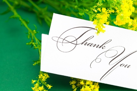 yellow field  flower  and card signed thank you on green background photo