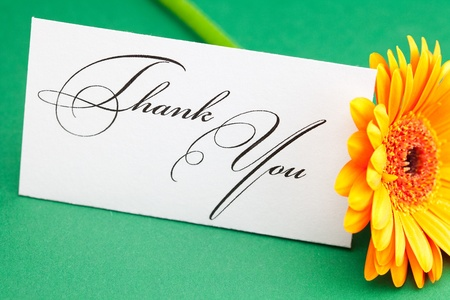 gerbera and card signed thank you on green background Stock Photo - 9278272