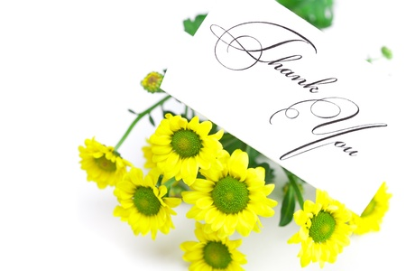 yellow daisy  and a card signed thank you isolated on white photo