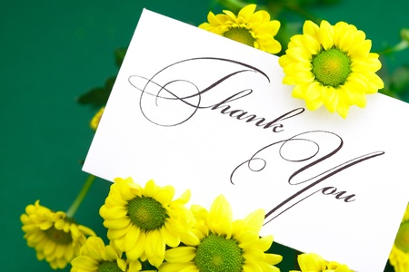 respond: yellow daisy and card signed thank you on green background