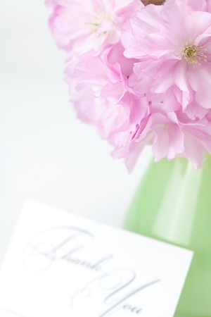 reserved sign: sakura flower in a vase and a card signed thank you isolated on white