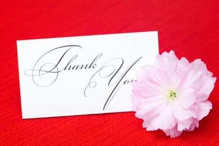 sakura flower and a card signed thank you on a red background photo