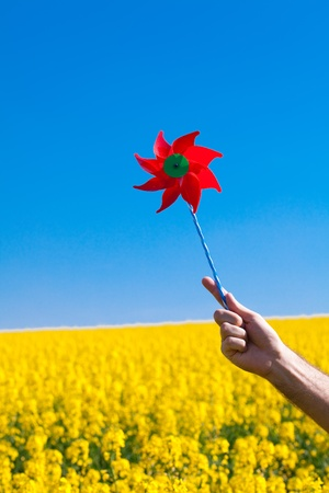 hand with pinwheel  in a field of yellow rape against the blue sky Stock Photo - 9527725
