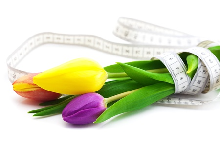 colorful tulips and measure tape isolated on white photo