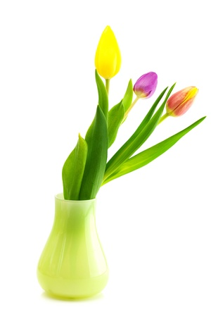 colorful tulips in vase isolated on white photo