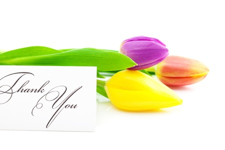 colorful tulips and a card signed thank you isolated on white Stock Photo - 9737202