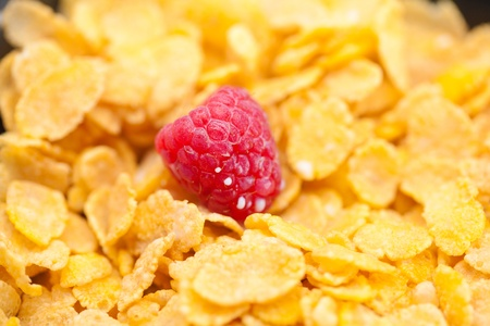 raspberry,milk and flakes in a bowl photo