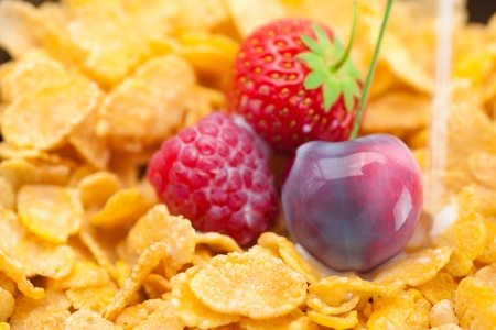 strawberry,raspberry,cherry,milk and flakes in a bowl photo