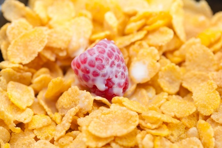 raspberry,milk and flakes in a bowl Stock Photo - 9880187
