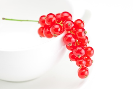 branch of red currants and a cup with a plate isolated on white Stock Photo - 10061915