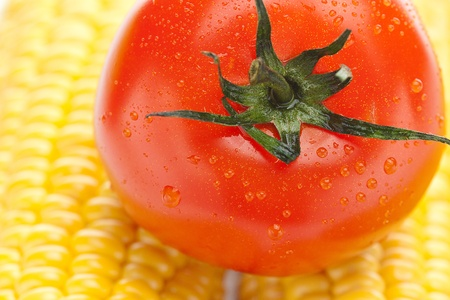 background of ripe yellow corn and tomato photo