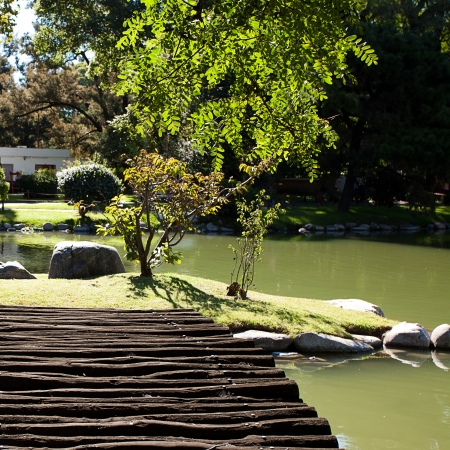 wooden bridge with and pond in the park photo