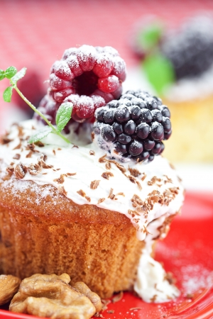 muffin with whipped cream, cake with icing, raspberry, blackberry and mint on a plate on plaid fabric photo