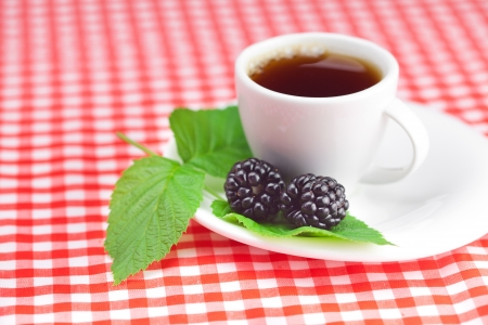 cup of tea and  blackberry with leaves on plaid fabric photo