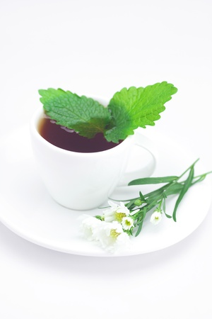 cup of tea,mint and chamomile isolated on white photo
