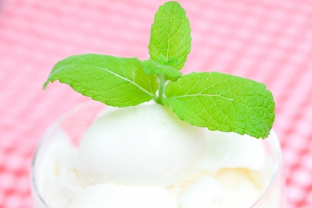 ice cream with mint in a glass bowl on plaid fabric photo