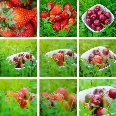 collage of cherries and strawberry on green grass photo