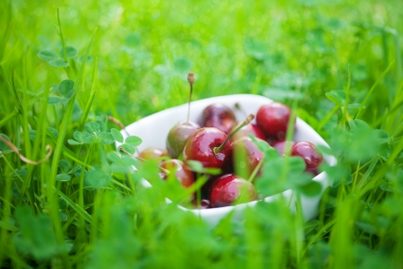 Cherries in a ceramic bowl on green grass