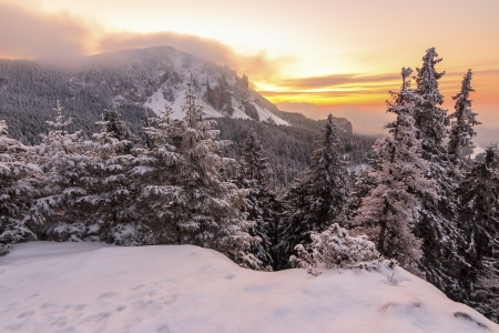 Beautiful winter sunrise in the mountains photo