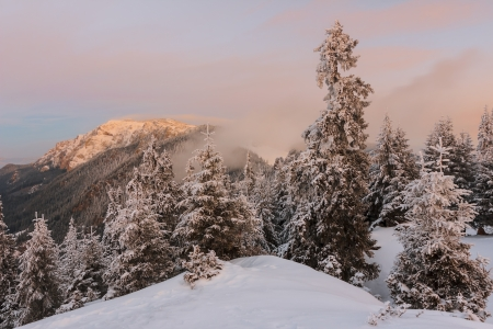 Winter sunrise in the Carpathian mountains photo