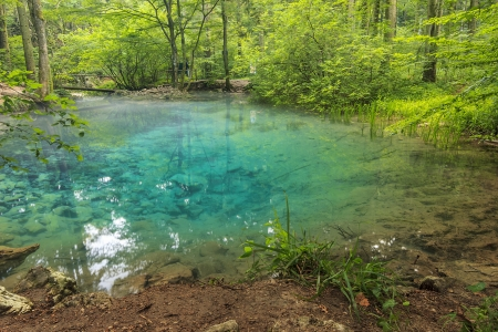 Clear water and beautiful water source in forest,Ochiul Bei,Beusnita National Park,Romania Stock Photo