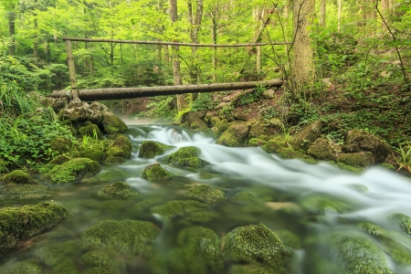 Wooden bridge and beautiful mountain river over mossy rocks in the forest,Romania photo