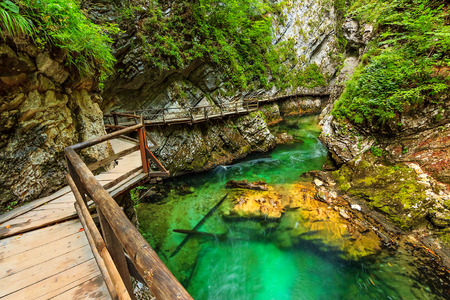 bled: Vintgar gorge and wooden path,Bled,Slovenia