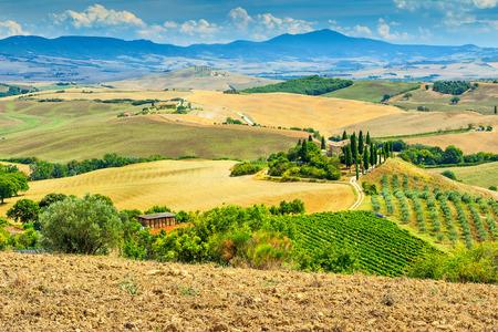 san quirico: Stone house and wineyard in Tuscany,San Quirico d