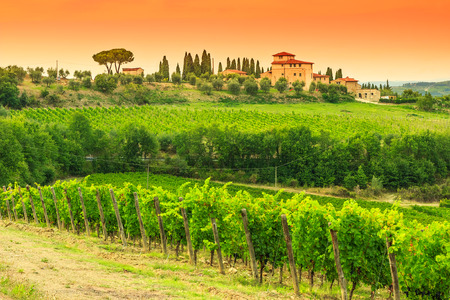Typical Tuscany stone house with vineyard in the Chianti region and magical sunset,Tuscany,Italy,Europe