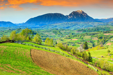 transylvania: Alpine landscape and green fields,Holbav,Transylvania,Romania,Europe