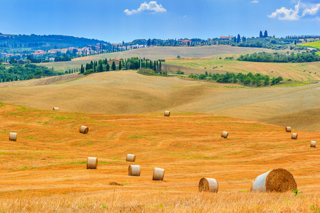 san quirico: Tuscany landscape,typical cityscape and hay bales on the hills,near Val dOrcia,Italy,Europe