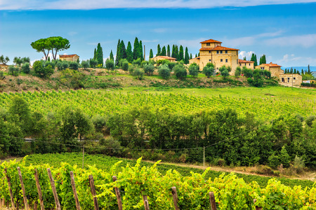 the tuscany: Typical Tuscany stone house with stunning vineyard in the Chianti region,Tuscany,Italy,Europe