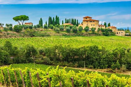 Typische Toscaanse stenen huis met een prachtig wijngaard in de Chianti, Toscane, Italië, Europa Stockfoto