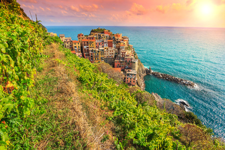 cluster house: The famous vineyard and stunning sunset on the riviera of Cinque Terre,Manarola town,Italy,Europe Stock Photo