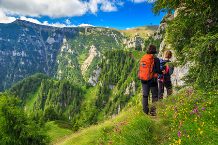 Womans hiking team with colorful backpacks walking on narrow trail,Bucegi mountains,Carpathians,Transylvania,Romania,Europe