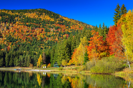 anna: Autumn forest landscape and stunning famous volcanic lake in Transylvania,St Anna Lake,Romania,Europe