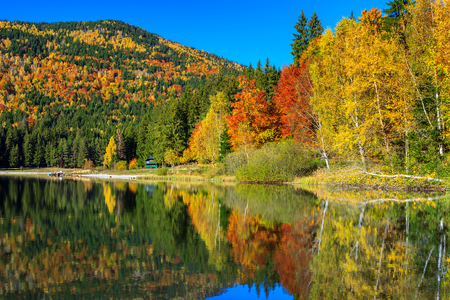 anna: Autumn forest landscape and beautiful famous volcanic lake in Transylvania,St Anna Lake,Romania,Europe