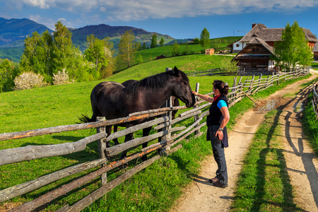 caresses: Alpine rural landscape and young woman caressing his beautiful  horse,Bran,Transylvania,Romania,Europe Stock Photo