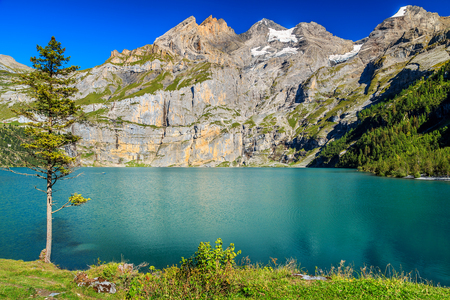the bernese oberland: Stunning alpine lake and beautiful mountains with glaciers and green forests,Oeschinen lake,Bernese Oberland,Switzerland,Europe