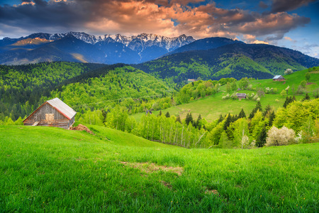 landscape: Spectacular wilderness in summer,Bran,Transylvania,Romania,Europe