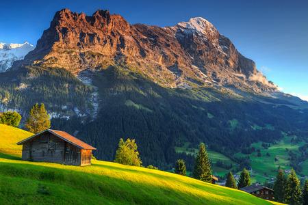 Spectacular Swiss alpine landscape with green fields and famous Eiger peak,Bernese Oberland,Switzerland,Europe Standard-Bild