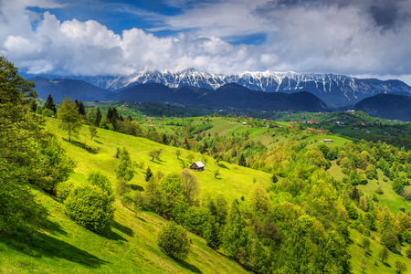 Stunning alpine landscape with green fields and high snowy Piatra Craiului mountains near Brasov,Transylvania,Romania,Europe