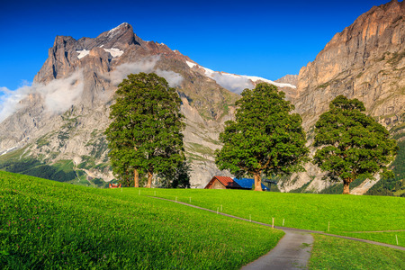 the bernese oberland: Beautiful green grass and spectacular rural farm in Grindelwald mountain village,Bernese Oberland,Switzerland,Europe