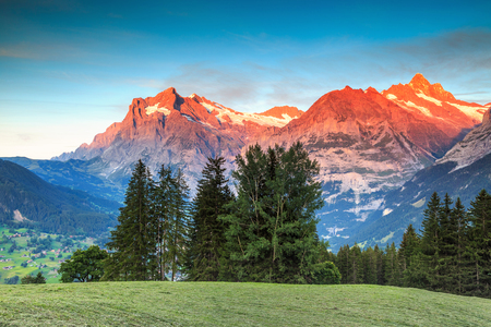 the bernese oberland: Stunning alpine landscape and magical sunset with Wetterhorn peak in background,Grindelwald,Bernese Oberland,Switzerland,Europe