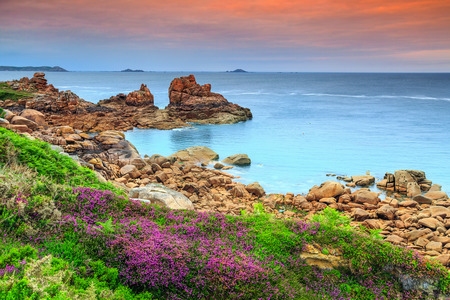 ploumanach: Amazing sunset with colorful flowers in Perros-Guirec on Pink Granite Coast,Brittany,France,Europe