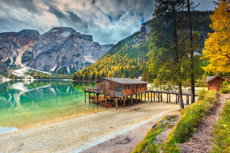 pine forest: Stunning autumn alpine landscape with old wooden dock house on the lake and typical wooden boats,Braies lake,Dolomites,Italy,Europe