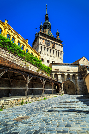 tradition: Stunning stone paved street with high clock tower in Sighisoara fortress,Transylvania,Romania,Europe